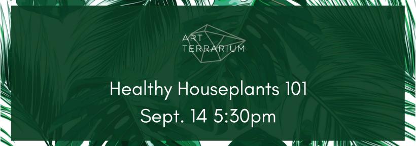 Healthy Houseplants 101Aug. 10 5-30pm (7)