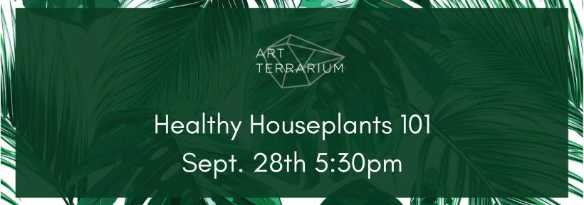 Healthy Houseplants 101Aug. 10 5-30pm (8)